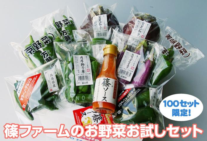 篠ファームのお野菜お試しセット